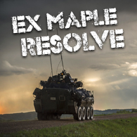 Exercice Maple Resolve